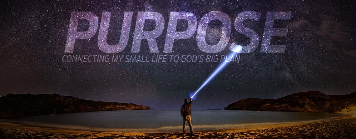 Purpose Web Banner